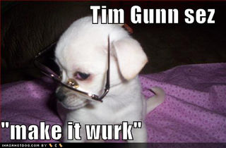 Cute-puppy-pictures-tim-gunn