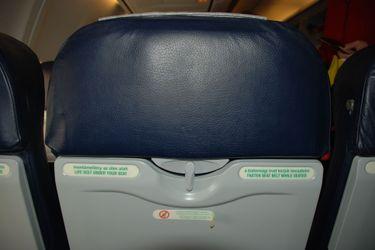 Back_of_malev_seat
