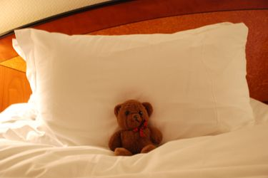 Bear_pillow