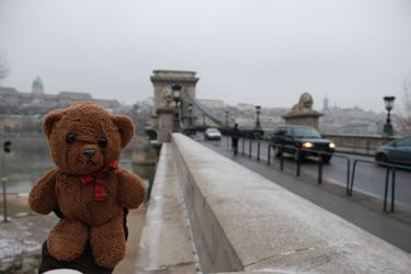 Bear_chain_bridge
