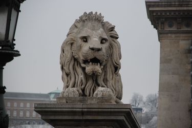 Chain_bridge_lion_1