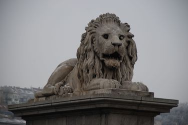 Chain_bridge_lion_2